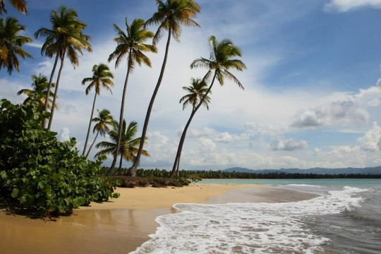 The beach at Tropicalia